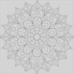 Mandalas Coloring for Adults Inspirational Images 25 Flower Mandala Printable Coloring Page by Printbliss