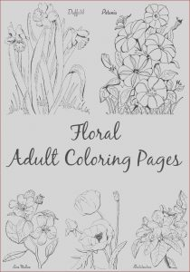 Online Coloring Book for Adults Cool Photography 10 Floral Adult Coloring Pages the Graphics Fairy