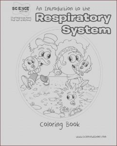 Respiratory System Coloring Sheets Beautiful Photography Respiratory System Coloring Pages Coloring Home