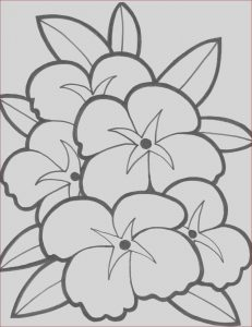 Simple Adult Coloring Pages Best Of Collection Simple Flower Coloring Pages with Images