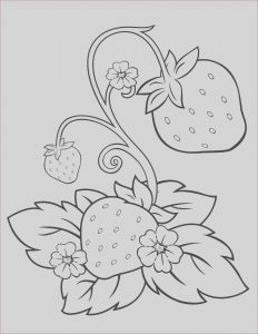 Strawberry Shortcake Coloring Page Inspirational Image Strawberry Shortcake 22 – Coloringcolor