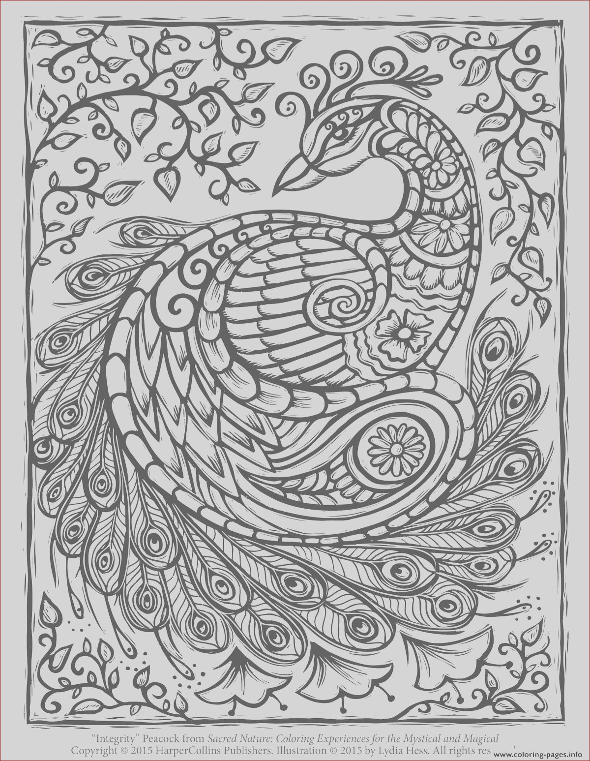 peacock adult hard advanced printable coloring pages book