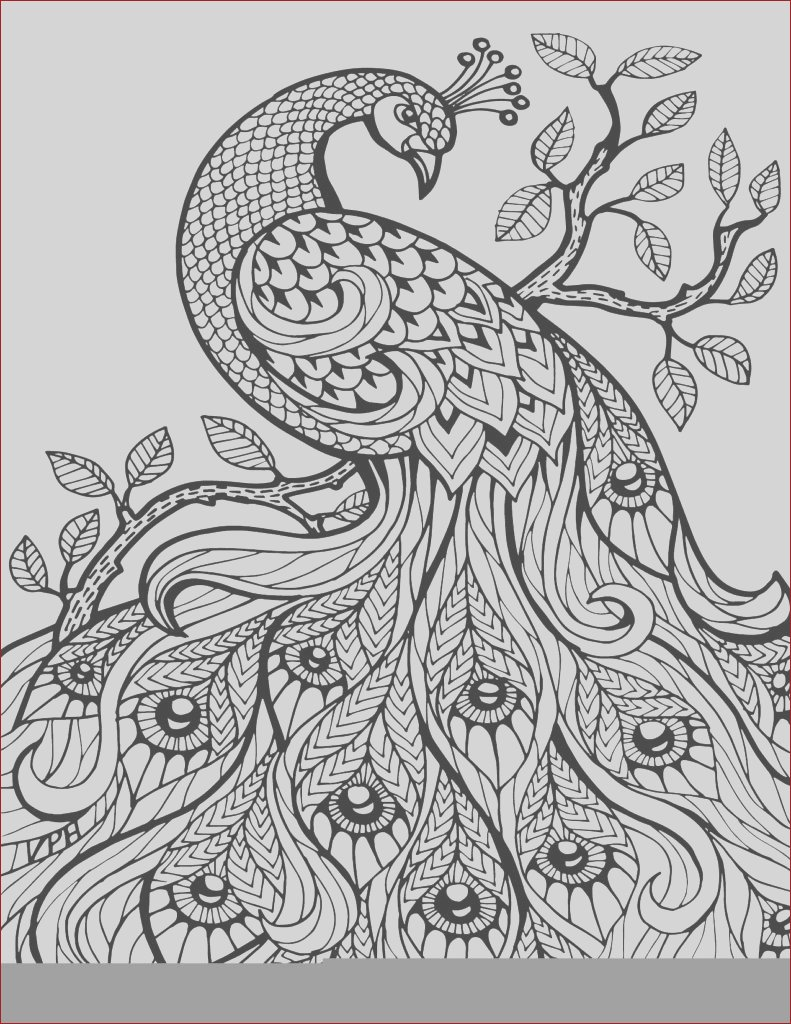 free printable coloring book pages best adult coloring books printable adult coloring pages abstract printable adult coloring pages paisley