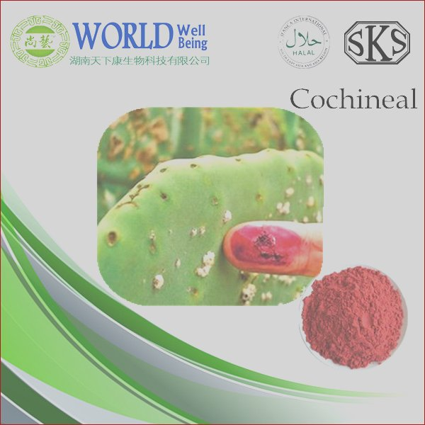 Food coloring powder cochineal carmine 50
