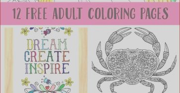 Coloring Books for Adults Printable Elegant Collection Free Printable Coloring Pages for Adults 12 More Designs