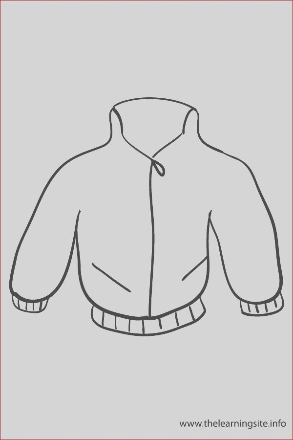 flashcards jacket