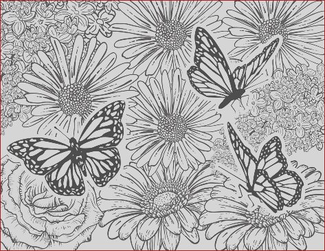 butterfly hand drawn adult coloring book page gm