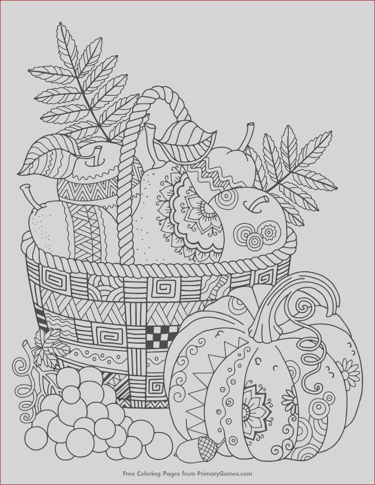 fall flowers pencil sketch templates