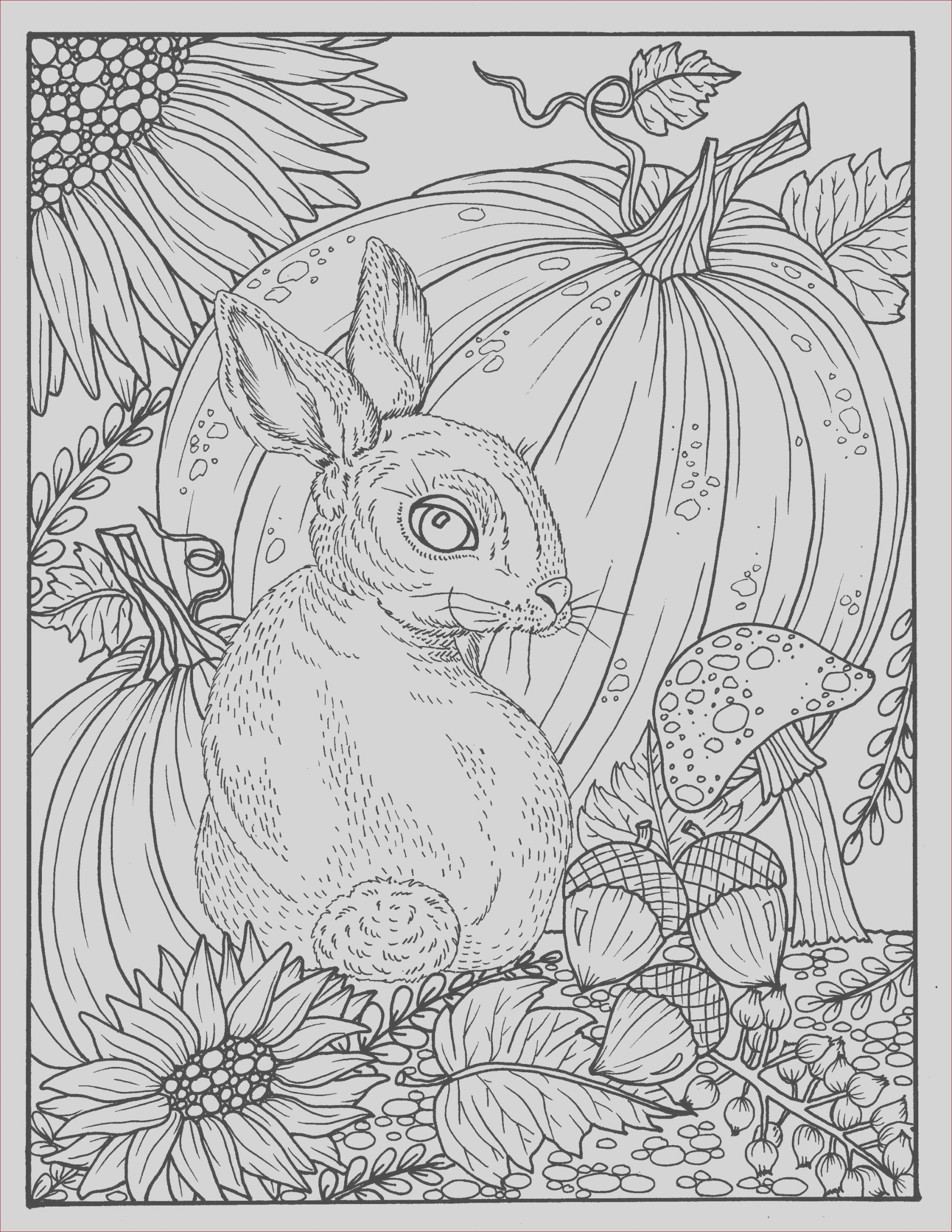 fall bunny and pumpkin coloring page