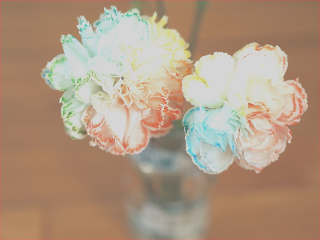 make your own rainbow flowers