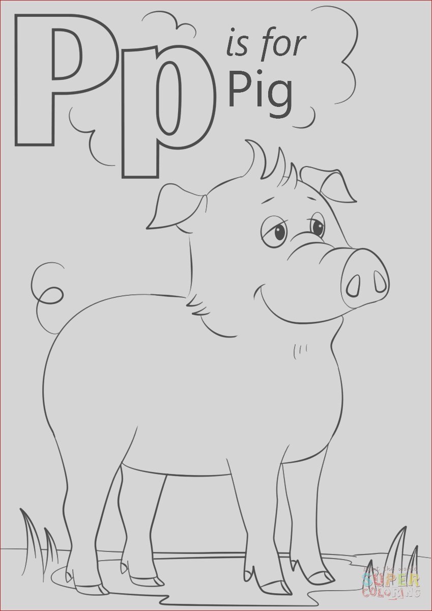 letter p is for pig