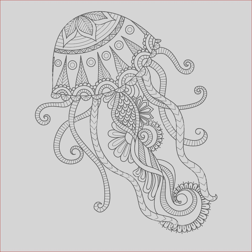 jellyfish coloring page gm